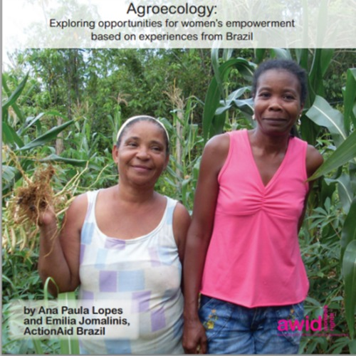 Feminist Perspectives towards Transforming Economic Power: Agroecology
