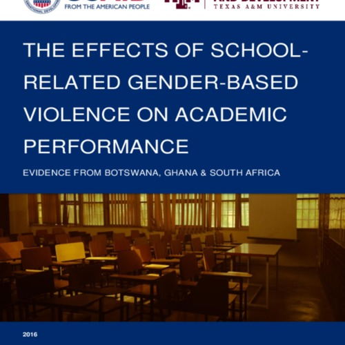 The_Effects_of_SRGBV__Academia_FINAL.pdf