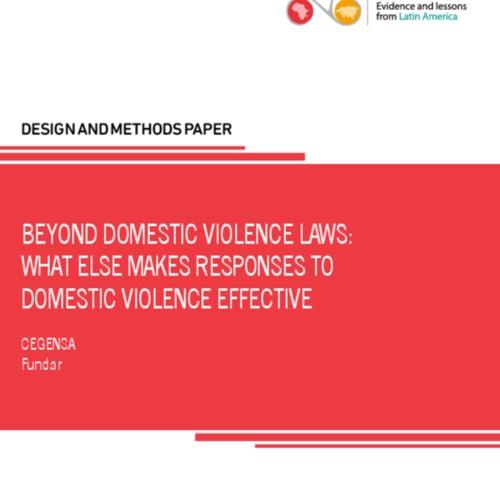 Beyond Domestic Violence Bills_1.pdf